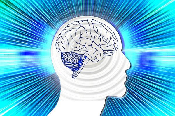 Franquia Supera – ginástica para o cérebro